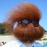 barbe-rousse.jpg
