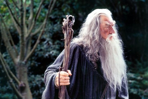 Gandalf_surprised[1].jpg