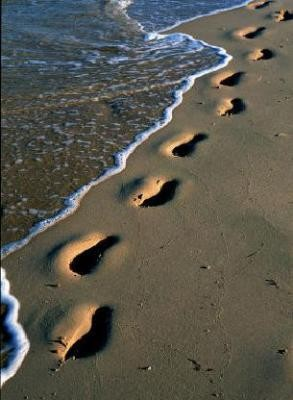 interprétation des rêves,christiane riedel interprète de rêves,les rêves dans la bible,rêve d'Abraham,Dieu parle dans les rêves,vision de Catherine de Sienne