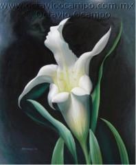 octavio ocampo-flor_del_triangulo[1].jpg