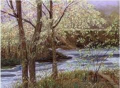 riviere_automne.jpg